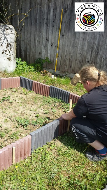 Schatzi beim Beet bauen