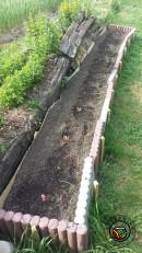 Seitenbeet bepflanzt