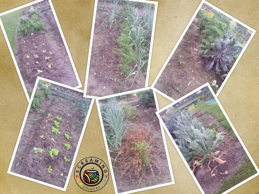 collage Omas Garten