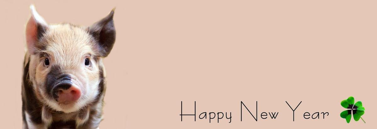 Ein frohes neues Jahr! (Mit Jahresrückblick 2017)