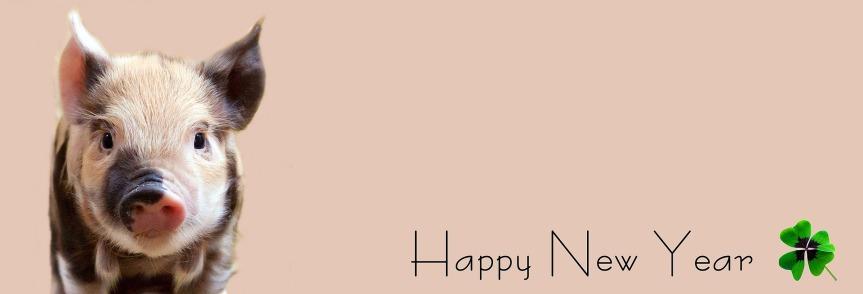 Ein frohes neues Jahr 2019! (Mit Jahresrückblick2018)