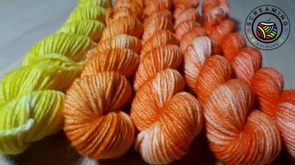 ColourHighTwist Minis Fade Gelb-Orange 1