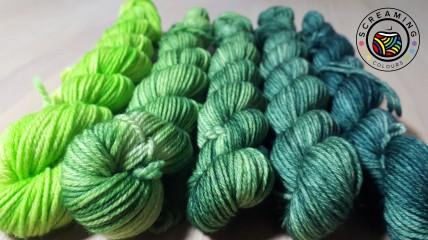 ColourHighTwist Minis Fade Grün 1