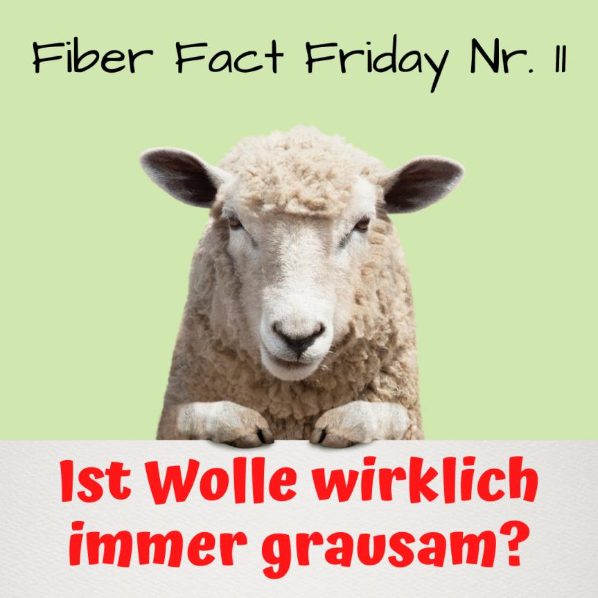Fiber Fact Friday Nr. 11: Ist Wolle wirklich immergrausam?